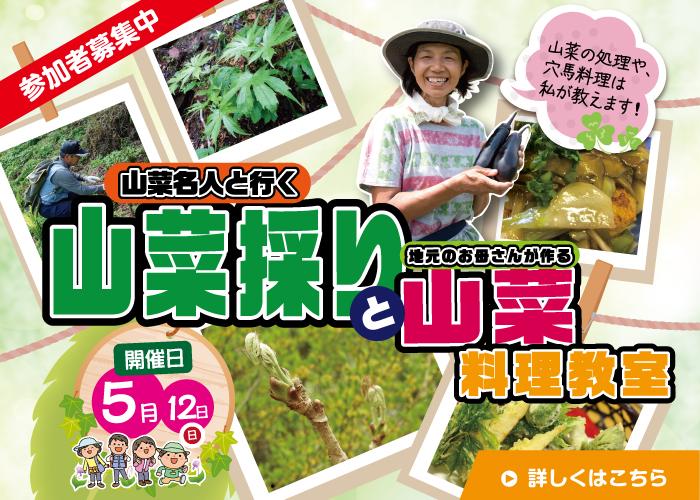 山菜名人と行く山菜採りと山菜料理教室